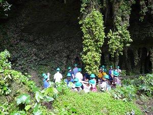 Camuy Caverns